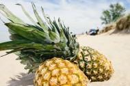 沙滩上的菠萝图片_10张