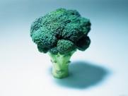 蔬菜图片_20张
