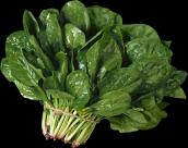 各类蔬菜透明背景PNG图片_15张