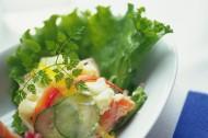 蔬菜沙拉圖片_52張