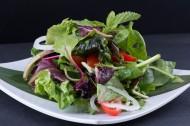 營養的蔬菜沙拉圖片_15張