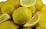 酸酸的柠檬图片_11张