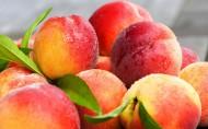 鲜美的桃子图片_14张