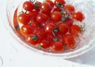 红红的小西红柿图片_15张