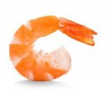 新鮮的蝦肉圖片_12張