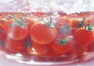新鲜西红柿图片_25张