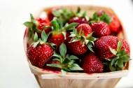 新鲜的草莓图片_14张