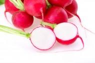 甜脆的樱桃萝卜图片_17张