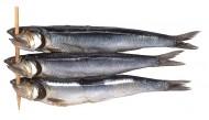鱼干图片_6张