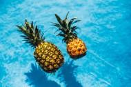 在游泳池的菠萝图片_11张