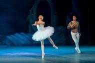 美麗的芭蕾舞表演圖片_10張