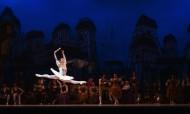 優美的芭蕾舞表演圖片_11張