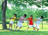 草地玩耍的儿童图片_58张