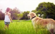 人与动物友好相处图片_23张