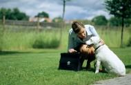 和宠物草地玩耍图片_30张