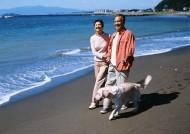 海边度假老人图片_28张
