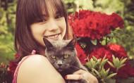 猫与人的友好图片_8张