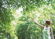 女性和绿色森林图片_28张