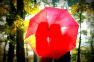 伞下的幸福 图片_18张