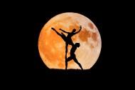 雙人芭蕾舞表演圖片_9張