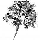 抽象花飾圖案圖片_18張