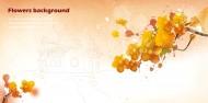 黃色系手繪花朵明信片圖片 _10張