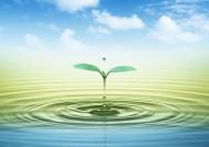 空氣和水的綠意圖片_106張
