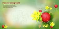 綠色系手繪花朵明信片圖片_11張