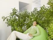 绿色环保工作空间图片_90张