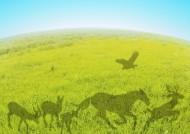 绿色、生命和水图片_22张