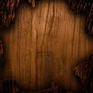 木板纹理背景素材图片_15张