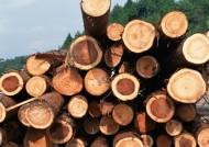 森林砍伐图片_7张