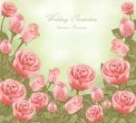手繪玫瑰素材圖片_6張