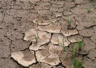 干旱土地图片_3张