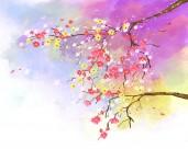韩国唯美花朵背景图片_19张