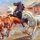 油畫動物三聯壁畫高清圖片_6張