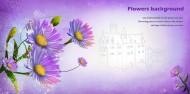 紫色系手繪花朵明信片圖片_14張