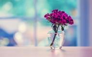 简约文艺的花瓶图片_20张