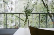 插着花的玻璃花瓶图片_12张