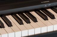 钢琴的黑白键盘图片_10张