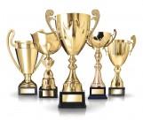 各种各样的奖杯图片_17张