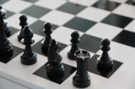 好玩的国际象棋图片_14张