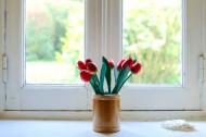插着花的花瓶图片_10张