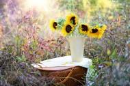 装有花束的花瓶图片_14张