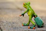 可爱的青蛙玩具图片_12张