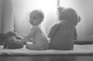 可爱的泰迪熊图片_11张