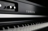 钢琴局部图片_15张