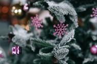 圣诞树的装饰品图片_11张