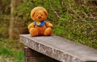 泰迪熊玩具图片_12张