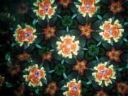 多彩的万花筒图片_8张